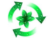Evolução verde ilustração do vetor