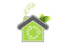 Evolução verde Imagem de Stock Royalty Free