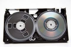 Evolución. imágenes de archivo libres de regalías