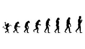 Evolución de la persona Imagenes de archivo