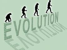 Evolución Fotos de archivo