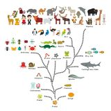 Evolutie in biologie, regelingsevolutie van dieren op witte achtergrond wordt geïsoleerd die kinderen\ 's onderwijs, wetenschap E royalty-vrije illustratie