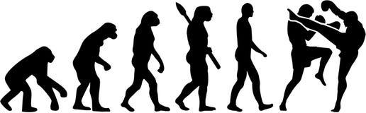 Evolutie van de Muay de Thaise vechter stock illustratie