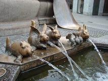 Evolutie van een konijn Stock Foto