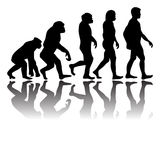 evolution Royaltyfri Foto