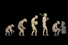 evolution Arkivfoton