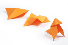 Evolution. The concept of evolution with a piece of origami Royalty Free Stock Images