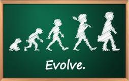 Evolution Royalty Free Stock Image