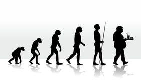 Evolution  Arkivfoto