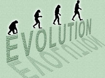 Evolution. Illustration  about man�s evolution and a writing made of little stones Stock Photos