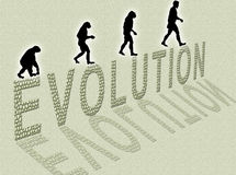 Evolution Stock Photography
