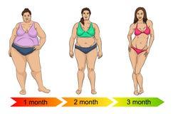 Evolution av den kvinnliga kroppen från fett som ska göras tunnare vektor illustrationer
