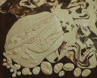 evolution för 6 keramik Arkivfoton