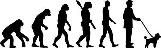 Evolution för leksakpudel stock illustrationer