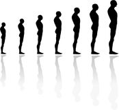 Evolution and growth. Illustration of human shapes in evolution Vector Illustration