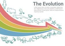 The Evolution Infographic. Vector illustration. The evolution of animal chart. Infographic and typographic for book and education vector illustration
