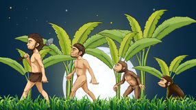 Evolution of man Stock Images