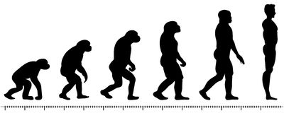 Evolution man Royalty Free Stock Photo