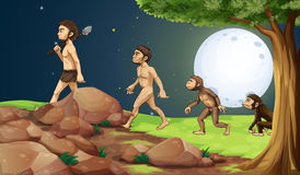 Evolution Of Man In The Hilltop Stock Images