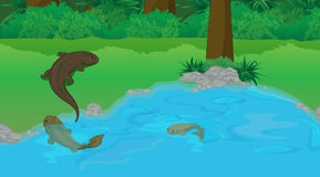 Evolution by the pond royalty free illustration