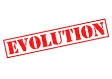 EVOLUTION Royalty Free Stock Photo