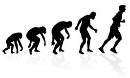 Evolution of the Runner Royalty Free Stock Photos