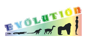 Evolution scale Stock Photography