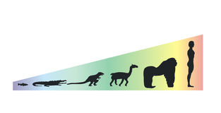 Evolution scale. Studying the evolution of species vector illustration