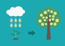 Evolution of tree Stock Image