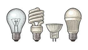 Evolution type electric lamp. Incandescent bulb, halogen, cfl and led. Royalty Free Stock Photo