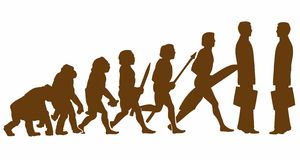Evolution Stock Image