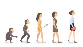 Evolution of woman. From monkey to businesswoman Royalty Free Stock Images