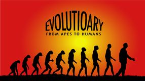 Evolutionary. From apes to human evolution Royalty Free Illustration