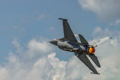 Evolutionen av falken för F 16 Arkivbild