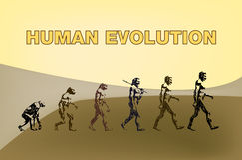 evolutionhuman Royaltyfri Fotografi