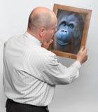 Evoluzione umana. Fotografia Stock
