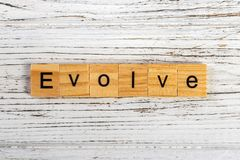 EVOLVE word made with wooden blocks concept.  stock photography