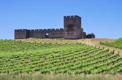 Evora Castelo de Valongo Стоковые Фото