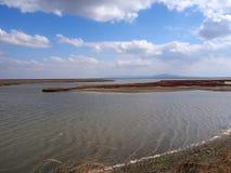 Evros Delta National Park Royalty Free Stock Photos