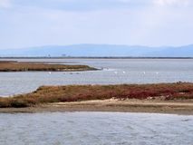 Evros Delta National Park Royalty Free Stock Image
