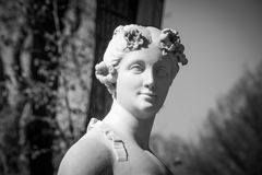 Evterpa muse of lyrical poetry Royalty Free Stock Photos