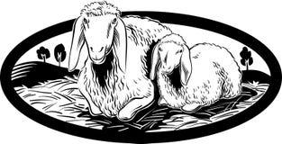 Ewe and her lamb. Royalty Free Stock Photos