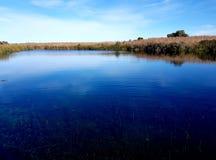 Ewen-` s Teiche, ursprüngliches Frischwasserökosystem Stockfotografie