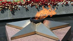 Ewige Flamme und Blumen zum Gedenken an den Sieg stock video footage