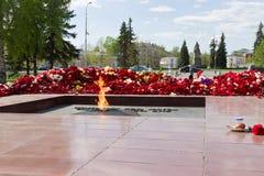 Ewiges Feuer gegen Gartennelke blüht nach dem 9. Mai Tag des großen Sieges, Feier des Sieges im zweiten Weltkrieg Lizenzfreie Stockbilder