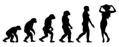 Ewoluci kobieta ilustracja wektor