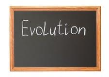 ewolucja Fotografia Stock