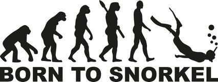 Ewolucja - urodzona snorkel ilustracja wektor