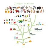 Ewolucja w biologii, planu zwierzęta odizolowywający na białym tle ewolucja dzieci «s edukacja, nauka Ewolucji skala royalty ilustracja