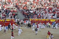 Exécutez les taureaux en Navarre Photo libre de droits